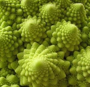 09roman cauliflower