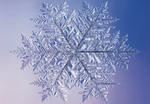 snowflake02