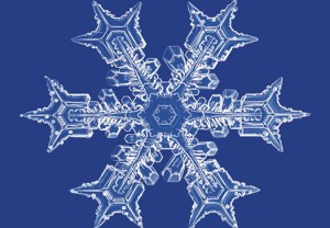 snowflake06
