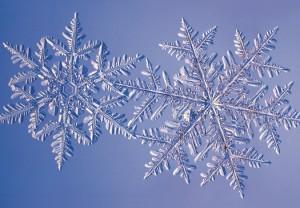 snowflake07